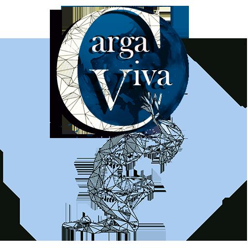 Carga Viva
